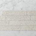 Picture of Terra Mondo Sand (Matt) 600x118