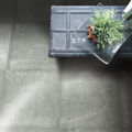 Picture of Forma Rialto Fern (Matt) 600x600 (Rounded)