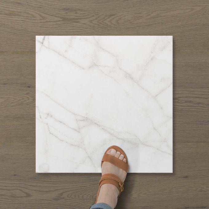 Picture of Aphrodite Statuario Wisp (Matt) 450x450 (Rounded)