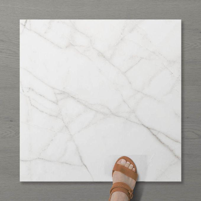 Picture of Aphrodite Statuario Wisp (Matt) 600x600 (Rounded)