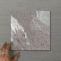 Picture of Pietra Ravine Fossil (Matt) 200x200 (Rectified)