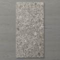 Picture of Terra Palacio Washed grey (Matt) 1200x600 (Rectified)
