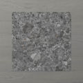 Picture of Terra Palacio Granite (Matt) 200x200 (Rectified)