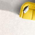Picture of Forma Gravitas Vanilla (Matt) 450x450 (Rounded)
